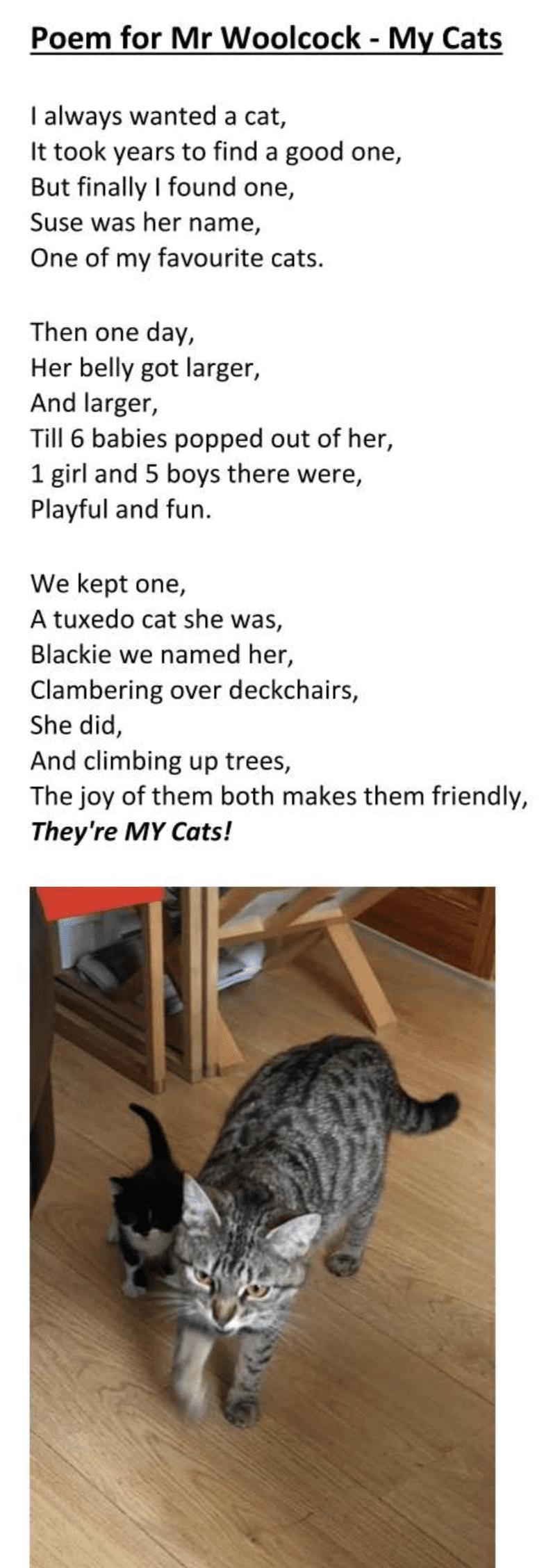 Poem Reuben